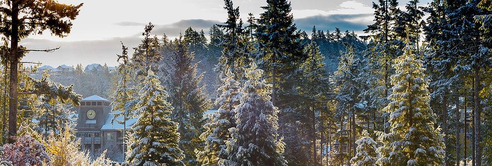 Merry Christmas on the Mountain