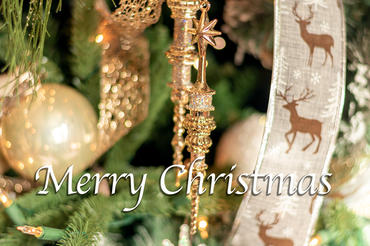 Merry Christmas tree.jpg
