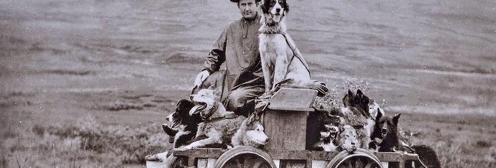 Old Timers Alaska Dog sled