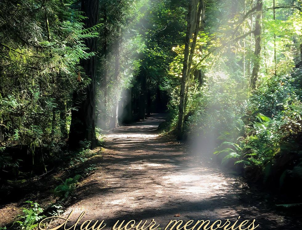 May your memories