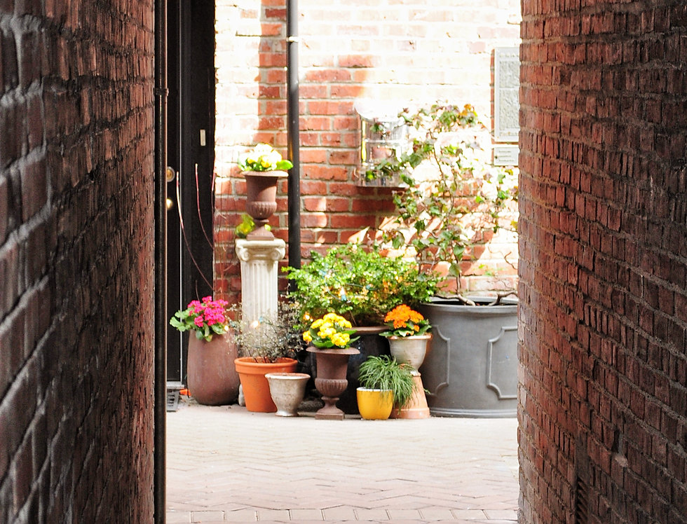 Flower pots in alley China town