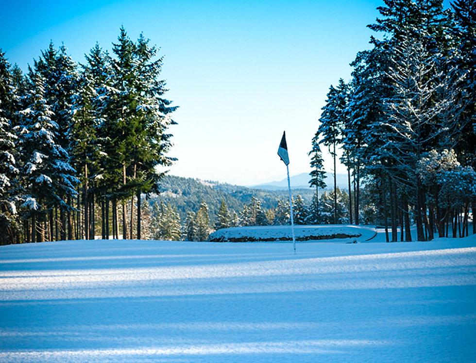 Golf green in snow