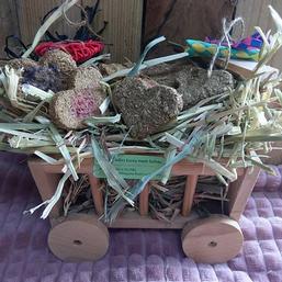 Hay and Treat Cart