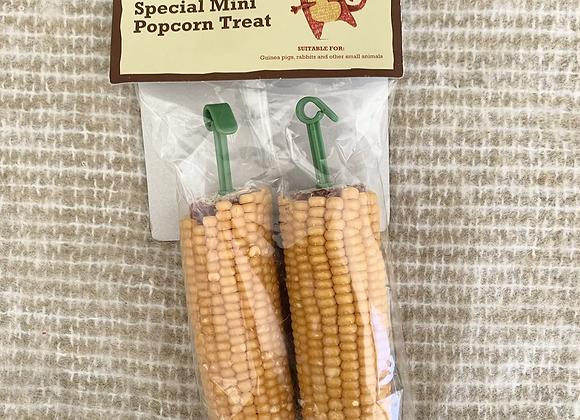 Mini Popcorn Treat