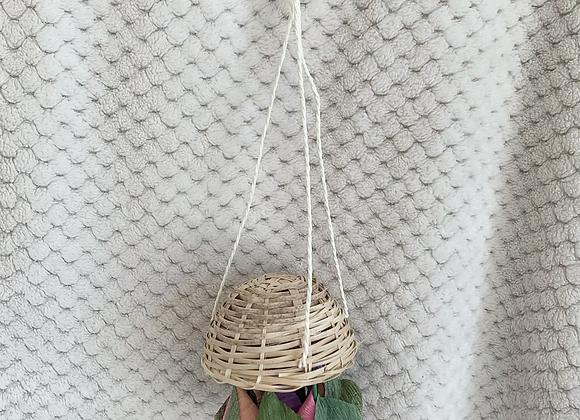 Boredom Breaker - Floral Hanging Basket