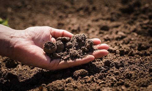 holding-soil.jpg