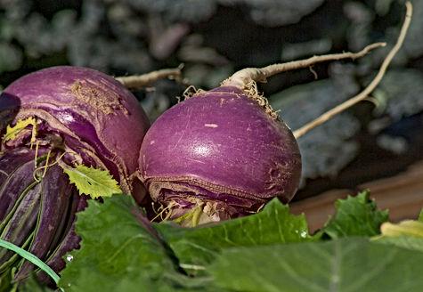 turnips-2097780_1920.jpg