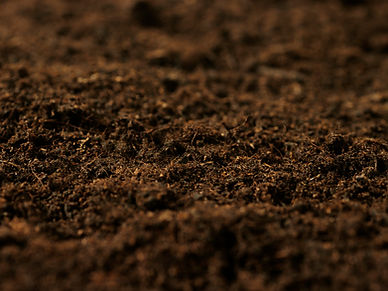fertilesoil1200x900.jpg