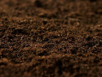 fertilesoil1200x900.jpg