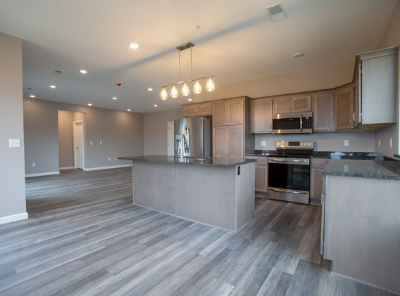 Open Kitchen/Living Space