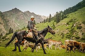 Kyrgyz Nomad.jfif
