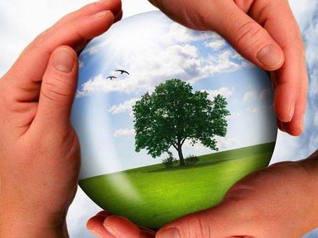 В Казахстане запускают проект по развитию экологического образования
