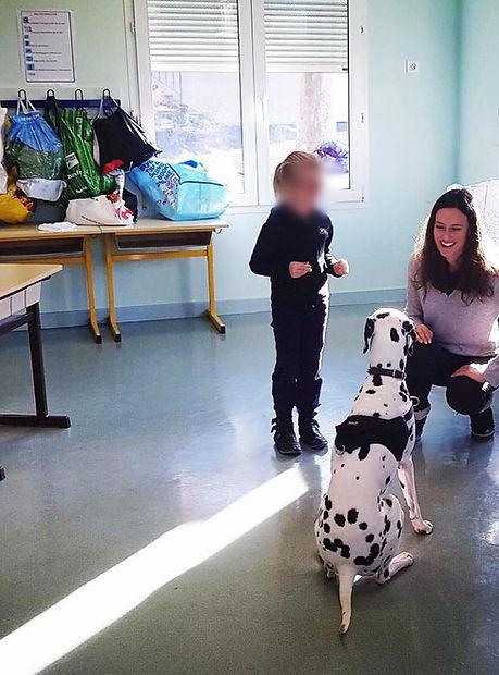 Médiation animale prévention morsure école