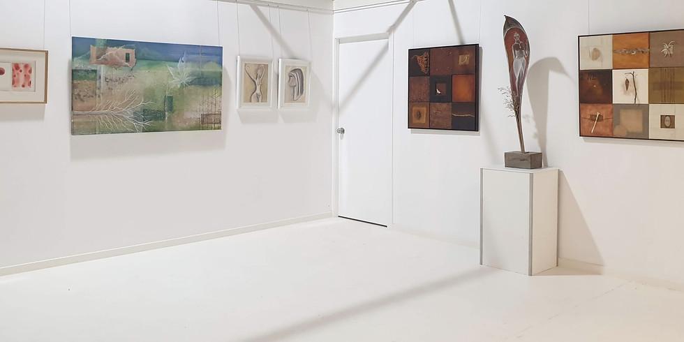 COPY Vivianne Hazenveld at her Art Sanctuary  (1)