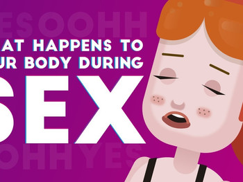 Your Body During Sex