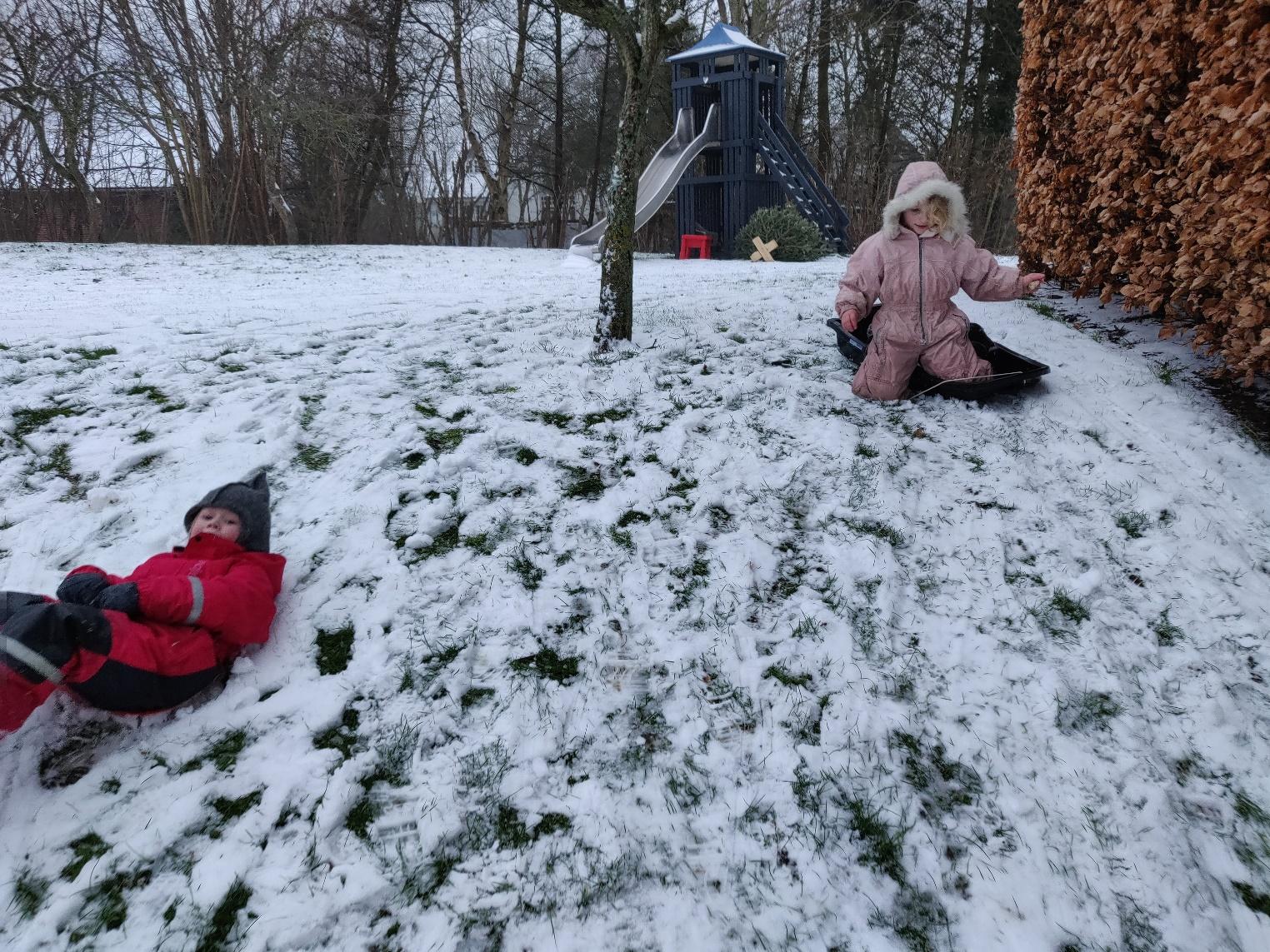 Vinter i haven