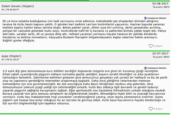 Tavsiye 11.jpg