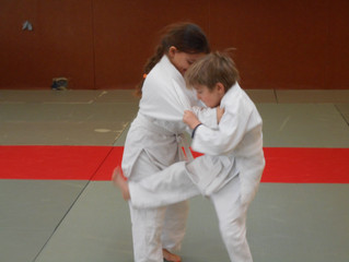 SPORTS ZAP JUDO VACANCES D'ETE