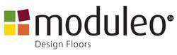 moduleo_logo.jpg