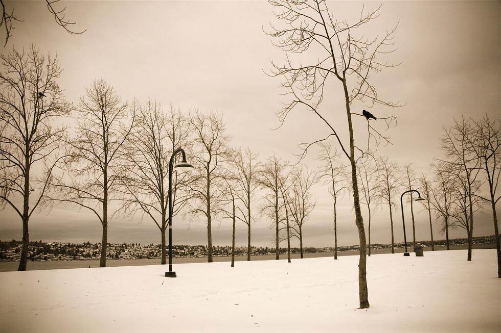 frozen_10_by_peterwaweru.jpg