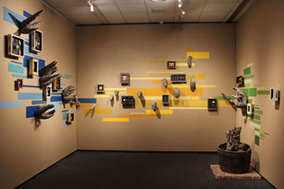 brotes de cuentos, mfa thesis exhibition, museum of fine art, florida state university, 2015.