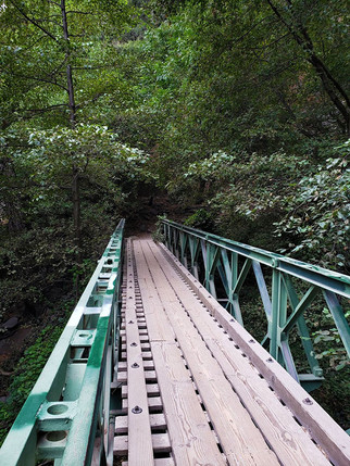 a creepy little bridge in the middle of the forest, Santa Anita Canyon, San Gabriel Mountains, California, 2019.