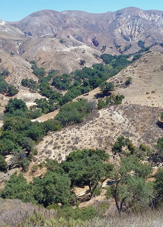 the arid san gabriel mountain range of Southern California.