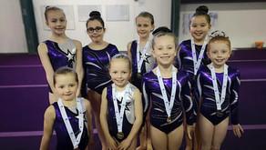 Lunar Gymnastics Club Stars Shine in Daily Record
