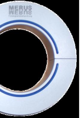 Ring-freigestellt-205x300.png