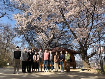Cherry Blossom 2021