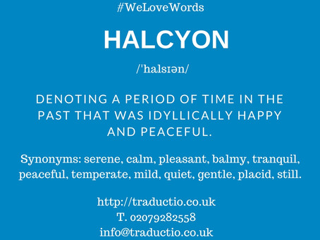 We love words - Halcyon