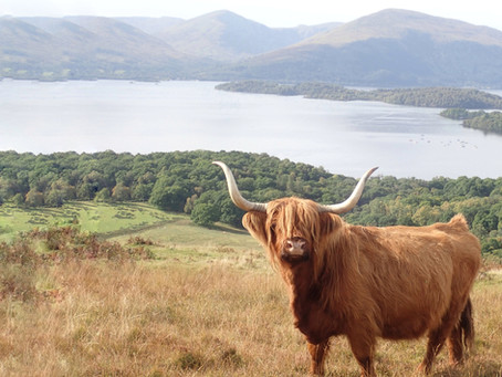 The Ultimate Scottish Bucketlist