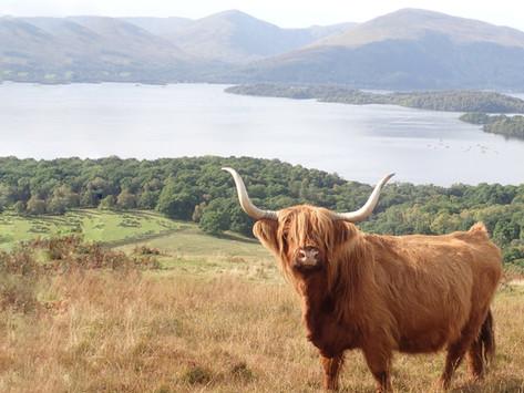 The Ultimate Scottish Bucketlist