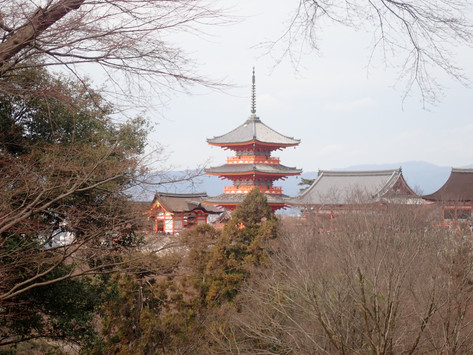 7 reasons why visiting Japan in Winter is the best.