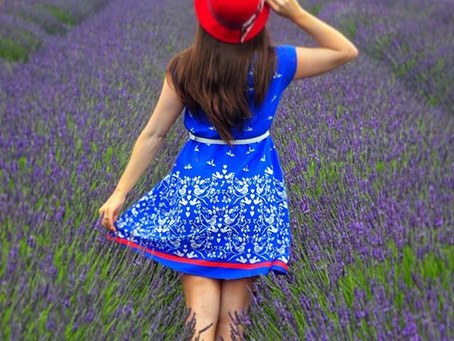 A day at the Lavender Farm