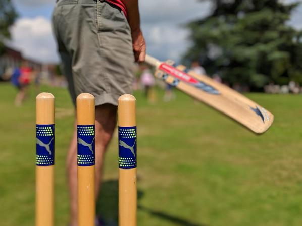 cricket stumps.jpg