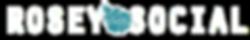 Social Media Marketing | Rosey Social