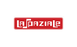 La Spaziale Repairs and Services Brisbane