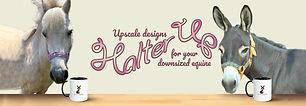 banner_website4_2000x.progressive.jpg
