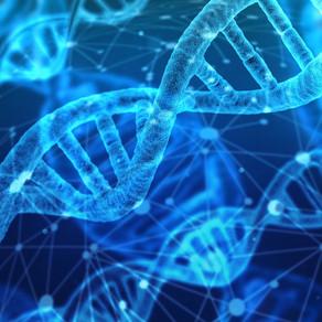 Genové klíče: Moudré jako stařena, binární jako počítač