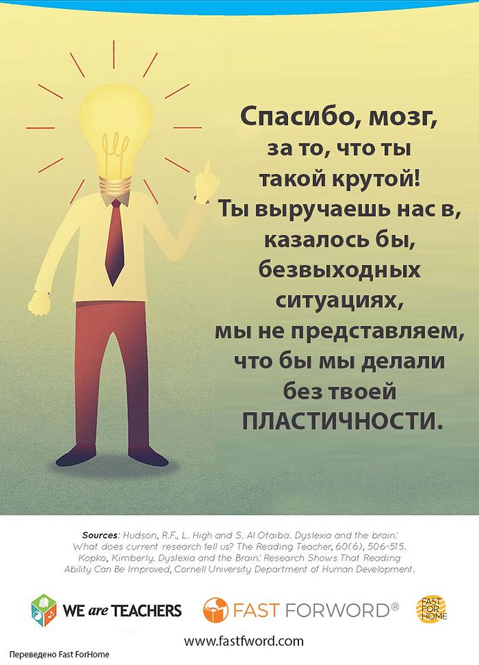Мозг при дислексии инфографика 7-1.png