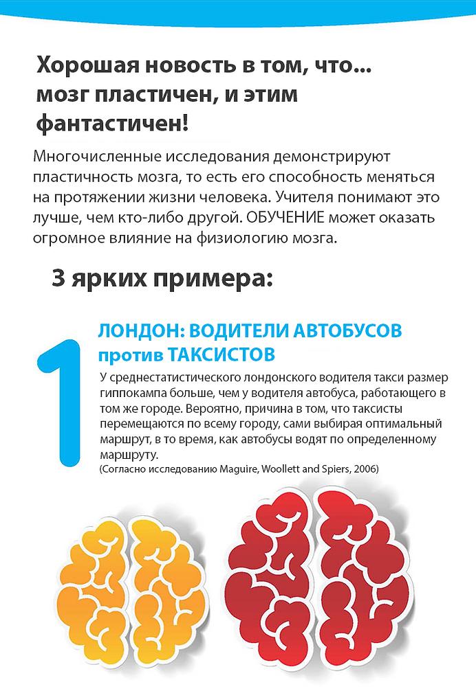Мозг при дислексии инфографика 4-1.png