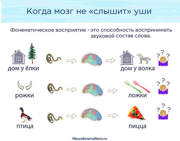 ЗРР, ЗПР, алалия, дислексия, СДВГ, РАС, НСВ, APD, Фонематическое восприятие, Фонематический слух, Развитие речи, Fast Word, Fast For Word, фаст фор ворд, речевое развитие у детей, задержка в развитии, ФФН, ОНР