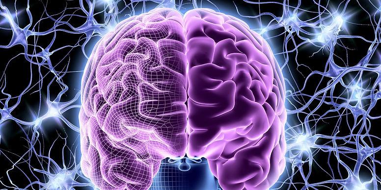 двуязычие повышает пластичность мозга.jpg
