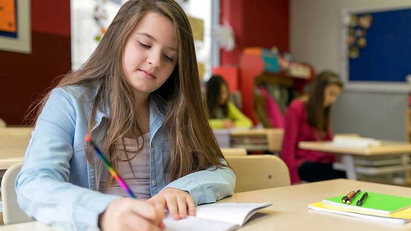 FFW, Fast ForWord, Фаст фо ворд, фаст фор ворд, СДВГ, СДВ, расстройство зрительного восприятия, диспраксия, дисграфия, проблемы с письмом, проблемы с учебой, особенный ребенок, дислексия, развитие ребенка в школе, расстройства обучения, нейропластичность