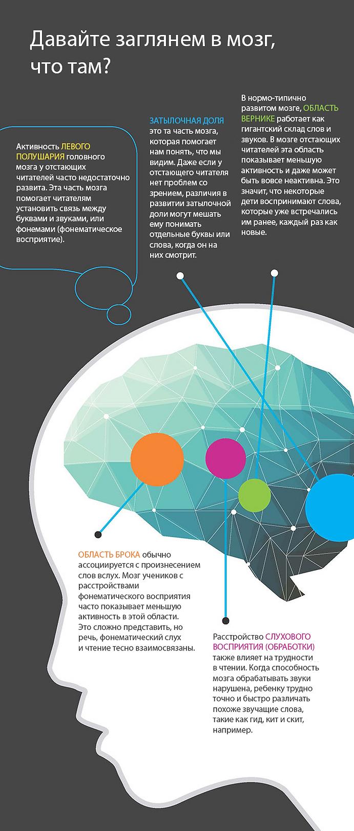 Мозг при дислексии инфографика 2-3.png