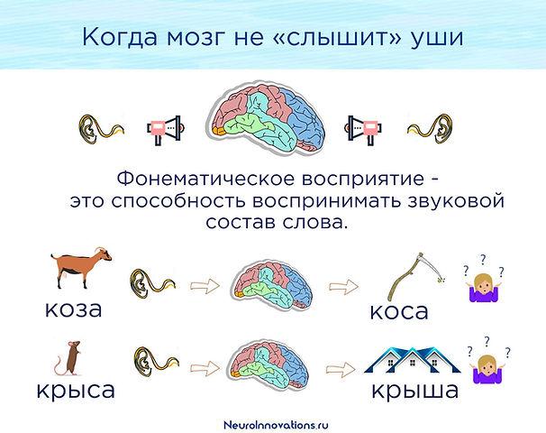 фонематический слух речевой слух.jpg