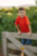 скачать бесплатно на русском, коррекционная речевая методика fast forword отзывы, ОНР, РАС, Фонематический слух, недоразвитие речи, гиперактивный ребенок, дефицит внимания, речевые дети, развитие речи, речевое развитие ребенка