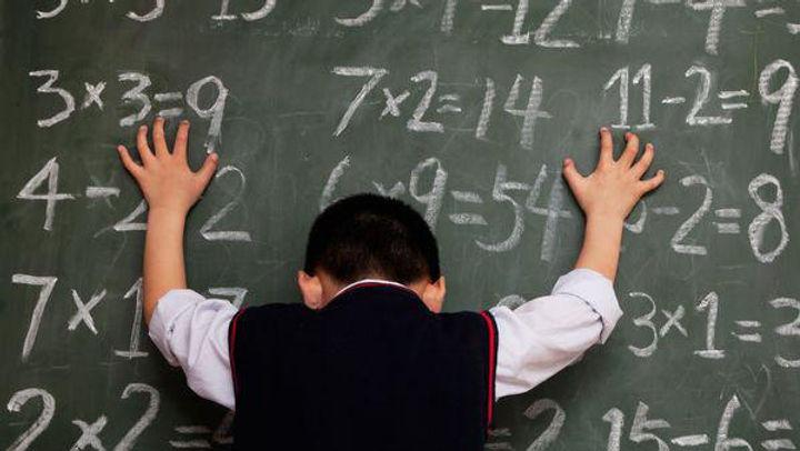 FFW, Fast ForWord, Фаст фо ворд, фаст фор ворд, СДВГ, дискалькулия, проблемы с математикой, проблемы с учебой, особенный ребенок, учителя, развитие ребенка, расстройства обучения, нейропластичность, устный счет, расстройства визуального восприятия, математическая тревожность