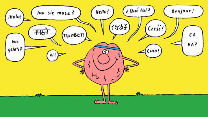 двуязычие - развивает мозг.jpg